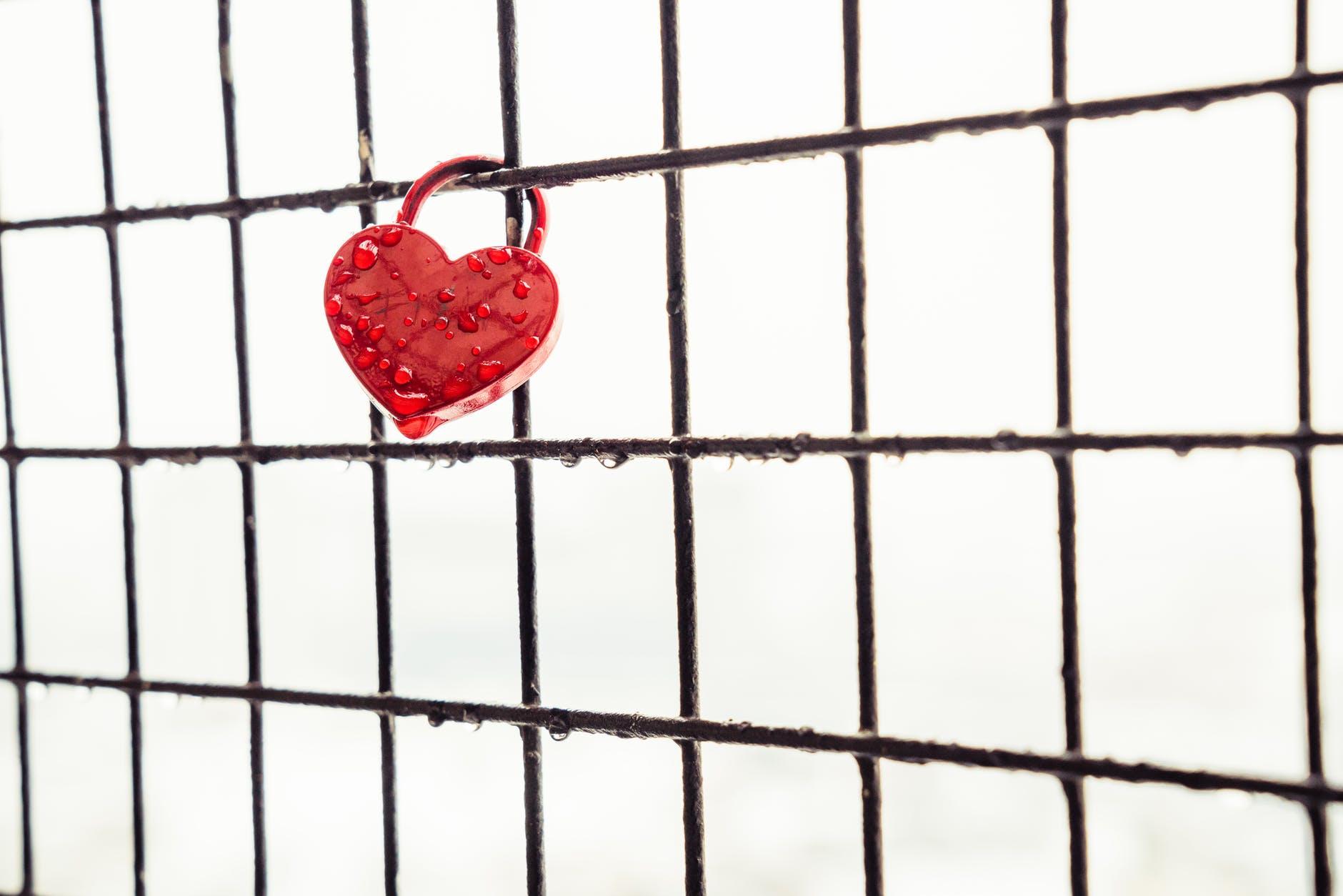 love heart window fence